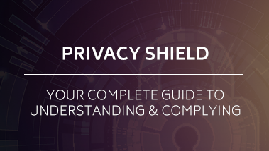 2_resource-privacyshield.png